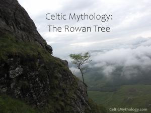 Celtic Mythology Rowan Tree