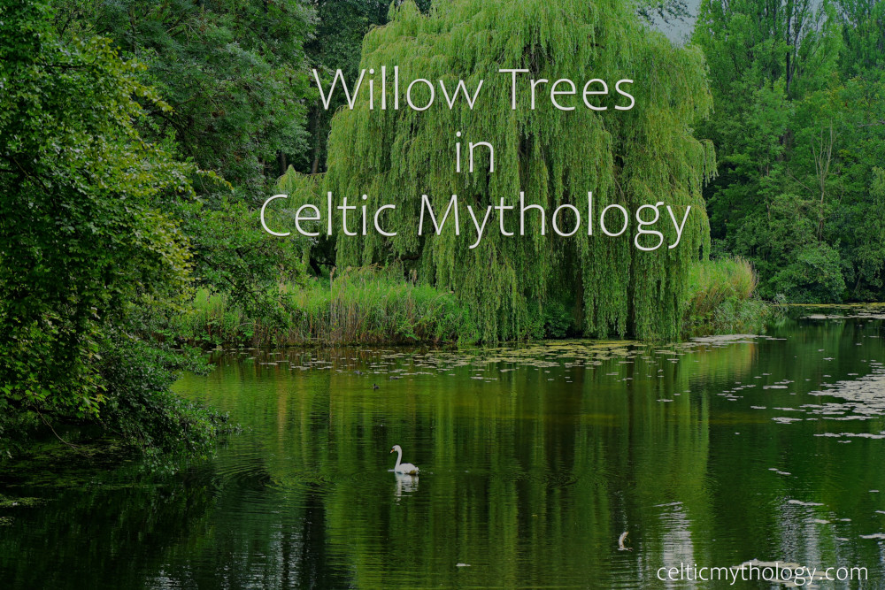 Willow Trees in Celtic Mythology