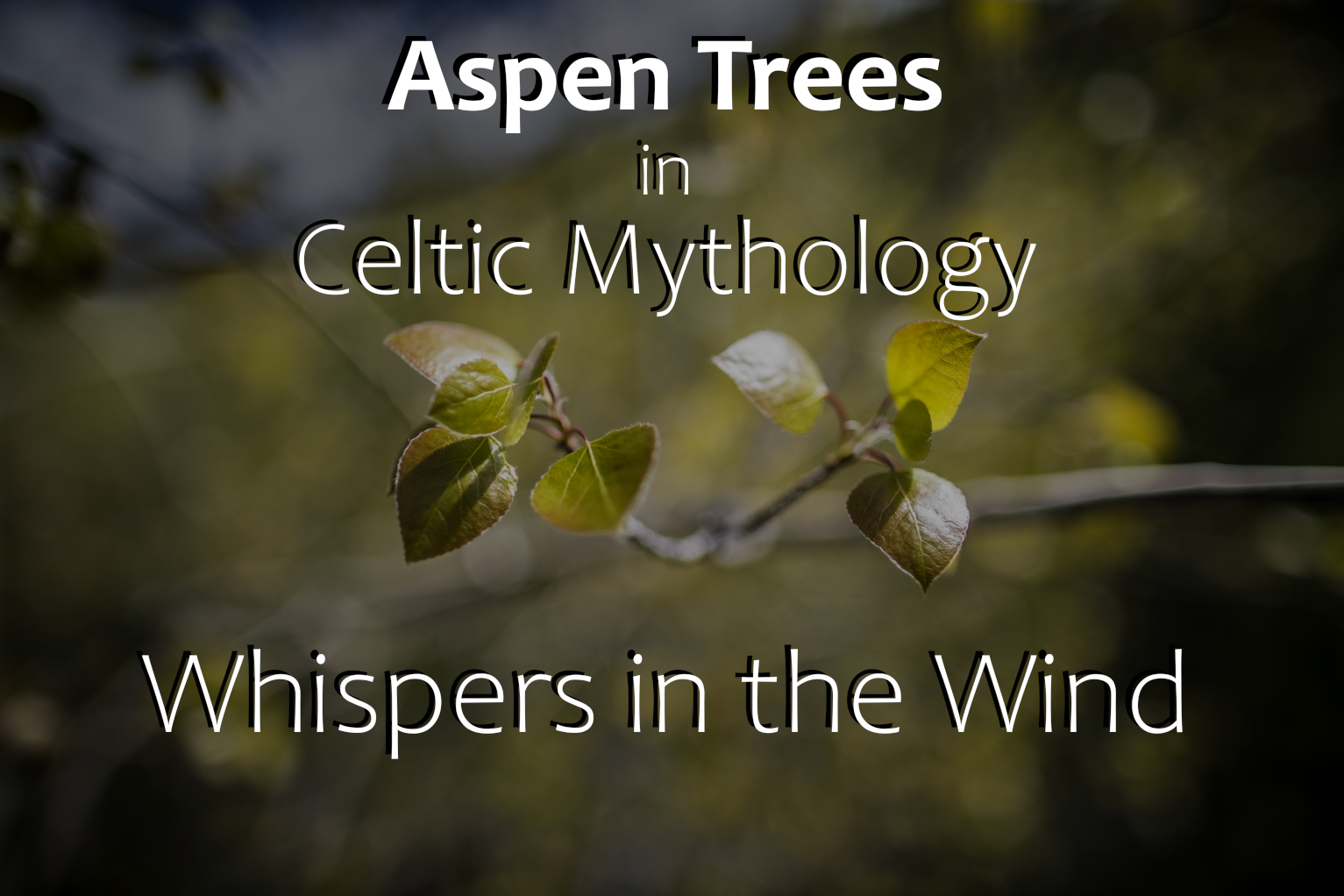 Celtic Mythology Aspen